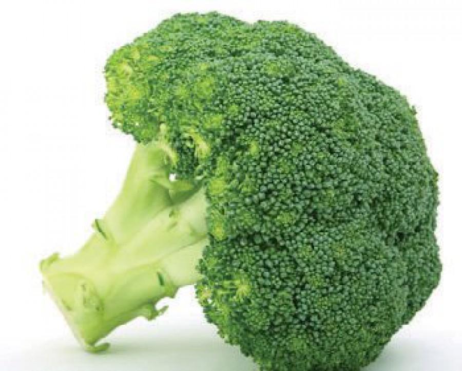 Broccoli S14